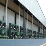 Industrial Refrigeration Plant Produce Cold Room for Vegetable and Fruit Storage