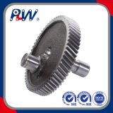 OEM Automobile Gearbox Helical Gear