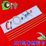 New Outdoor Educational/Education/Promotion Gift/Beach DIY Kite Toy for Kid/Child/Adult