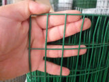 Galvanzied and PVC Coated Welded Wire Mesh