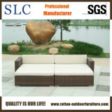 Rattan Sofa/Wicker Corner Sofa/Lounge Sofa (SC-B9503)