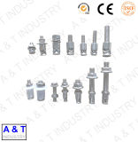 High-Quality 304 316 Stainless Steel Knock-on Type Anchor Bolt
