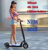 Cheap Folding Big Wheel Tire Electric E Bike
