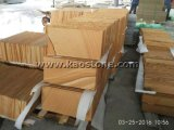 Natural Yellow/Wood Veins Sandstone for Floor/Wall Cladding