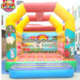 High Quality Inflatable Castle Inflatable Bouncer Wholesale Price