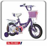 Children Bicycle with Bottom Front Basket Girls Princess Bike 12-20 (SL-TC-503)
