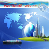 International Shipping Forwarding - Ocean Freight (container 20'40')