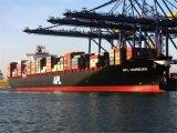 Maersk Sea Shipping From Guangdong/Fujian to Doha