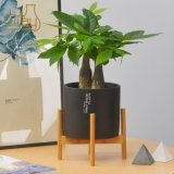 Modern Cement Cylinder Planter with Wooden Plant Stand