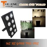 8*100W Single Cool White or Warm White LED Blinder Stage Light