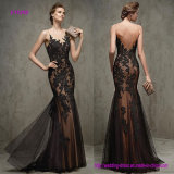 Elegant Polka DOT Tulle Bateau Neckline Mermaid Evening Dresses with Lace Appliques