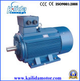 Electric Motor for Concrete Mixer