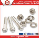 Stainless Steel Hex Bolt and Nuts