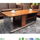 Modern Wood Veneer Coffee Table Sofa Center Table (J1867)