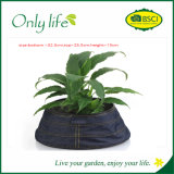 Onlylife Factory Direct Selling Fabric Planter with Different Design