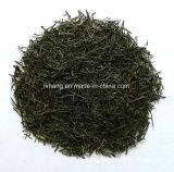 Gyokuro Steamed Green Tea Special Grade