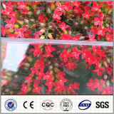 Clear Polycarbonate Solid Sun Sheet PC Plastic Panels Roofing Sheet