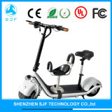 10inch 500W Electric Scooters Folding Electric Bike with Kids Seat