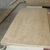 Prefinished Radiata Pine Plywood 3/4 Inch 4FT. X 8FT.