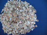 Crushed Sea Shell for Mosaic Decoration