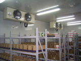 Different Size Cold Room for Fresh Keeping in Africa Market