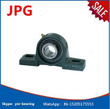 Bearing Steel Pillow Block Bearings Ucp202s Ucp202-10s