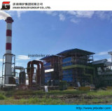 100th Water Cooling Vibrating Grate Bagasse Boiler for Sugar Mill