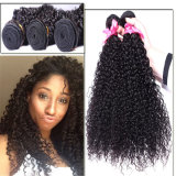 Factory Wholesale Price 100% Brazilian Virgin Hair Natural Color Weft Small Curly Hair Weft