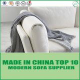 White Fashionable Genuine Modern Leather Sofa for Living Room
