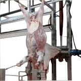 Slaughtering Equipment for Pig Cattle/Good Machine/Pig Slaughter Machinery