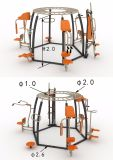 Outdoor Fitness Equipment Outdoor with Multifunction (OFE-SR01)