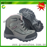 New OEM Factory High Quality Kids Sport Kids Hiking Outdoor Shoes