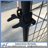 Cheap Galvanized Then Powder Coated Dog Gate Latch/Lock for Sale