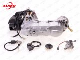 50cc 2 Stroke Engine Assy for 1PE40qmb Motorcycle Parts