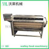 Brush Roller Washing Machine for Potato and Carrot and Taro