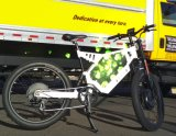 Steel Frame 3000W Electric Dirt Bike with PAS