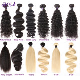 Wholesale Price Brazilian Human Virgin Hair for Black Women