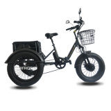 3 Wheel Fat Tire Electric Bicycle for Adults