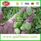 IQF Frozen Double Peeled Broad Bean with EU Standard