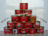 Gino Quality Tomato Paste for Ghana Market, Nigeria and Other African Countries