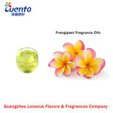 Longlasting Frangipani Flavor /Floral Fragrance Oils for Soybean Candles