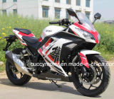 China Sport 350cc Water Cooling 250cc/200cc/180cc/150cc Air-Cooling Racing Motorcycle (Jinja)