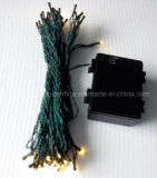 Christmas Tree Decorative Flexible Green Line LED String Light with Waterproof Battery Box