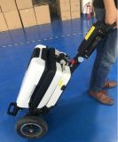 Lightweight Foldable Box-Type 3 Wheel Electric Mobility Scooter