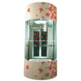 CE Approved Panoramic Panoramic Elevator for Sale