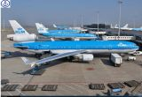 Consolidate Fly From China to Worldwide