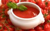 Tomato Sauce and Tomato Paste and Tomato Puree