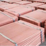 Copper Cathode Sheet Hot-Sell with Cheap Price