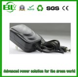 Universal Charger 25.2V1a Smart AC/DC Adapter for Lithium Battery Manufacturer Price