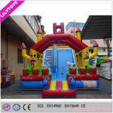 Beautiful Nice Color Cartoon PVC Slide Inflatable for Kids